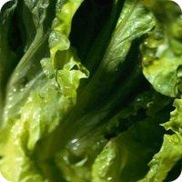 Вегетарианский салат с капустой и черносливом