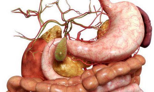 Народное лечение язвы желудка