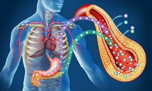 Что происходит в организме при диабете