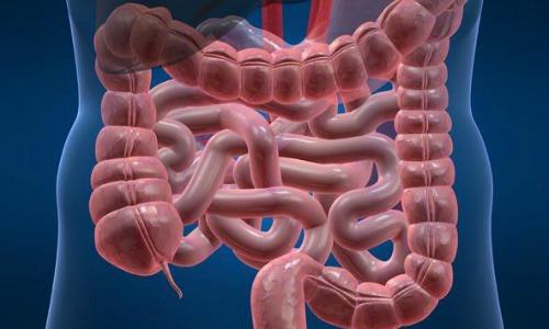 Чем лечить дисбактериоз кишечника