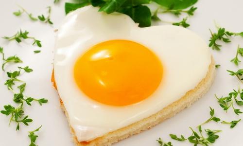 Зачем нужны белки в питании и при похудении