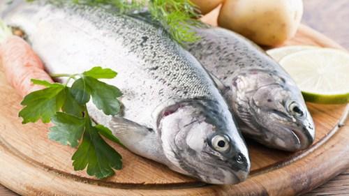 Способы определения качества рыбы