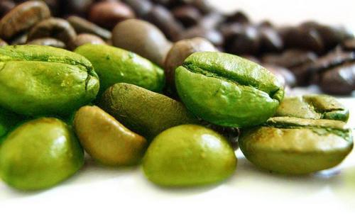 Зеленый кофе: вся правда о чудо-продукте