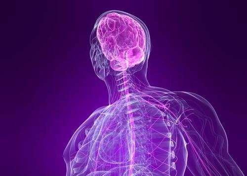 Что лечит невропатолог